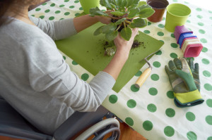 Disabled woman gardening at table